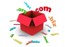 Domain Registration and website company in raipur chhattisgarh