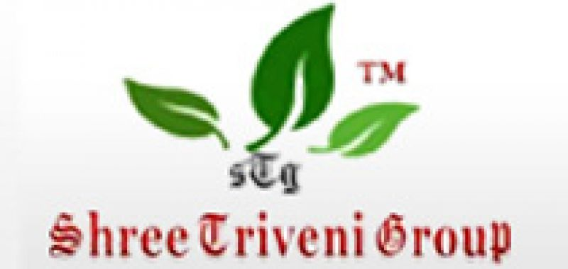 Shree Triveni Enterprises